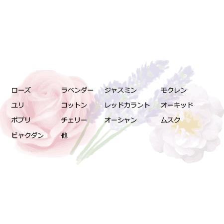sai_top3